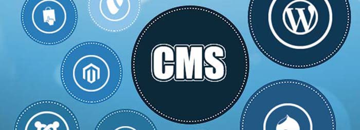 CMS Features for Business 2020
